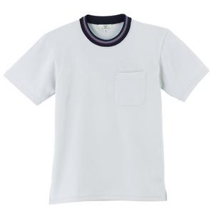 レインボーライン入介護用Tシャツ男女兼用(E95・C5)[シルバー]